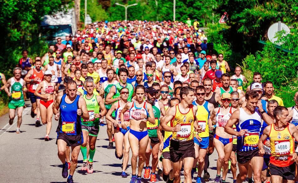 marathon running training schedules