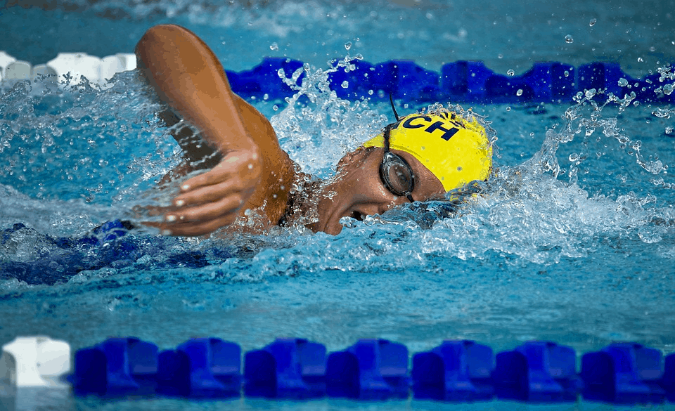 Total Immersion Exercises